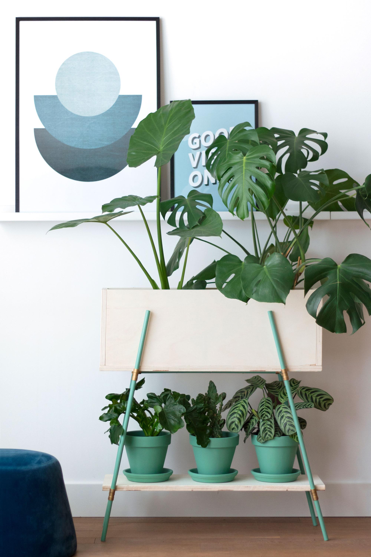 DIY plantenbank