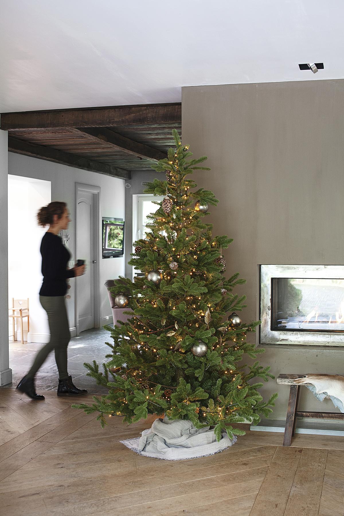 kerstbomen bas ilse