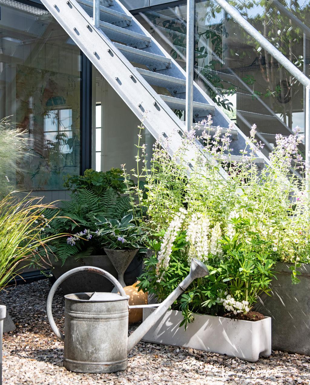 vtwonen binnenkijken special 2019 | binnentuin trap richting dakterras