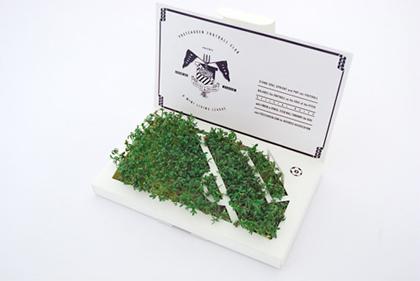 postcarden voetbalveld