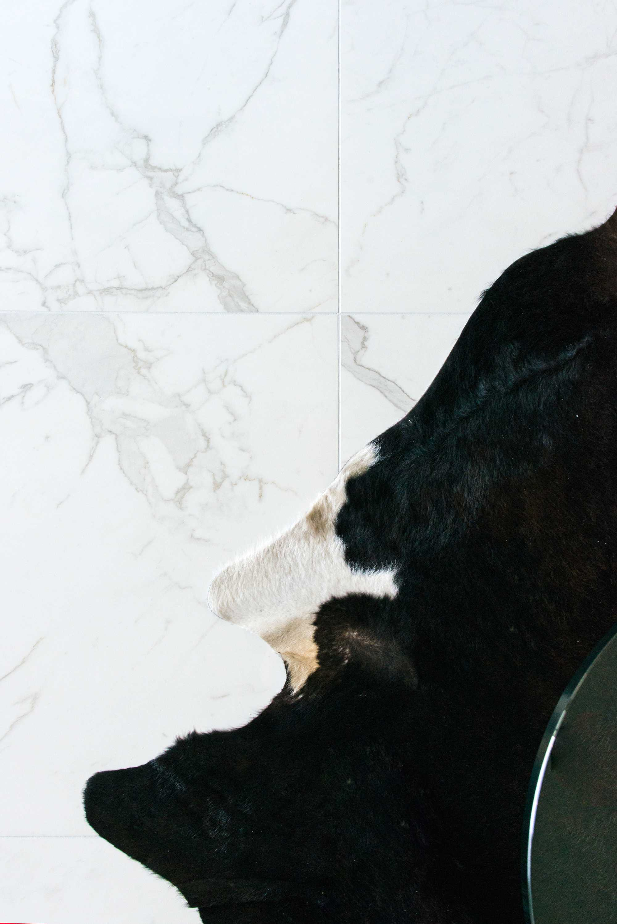 vloer wit gemarmerd tapijt keramische tegel