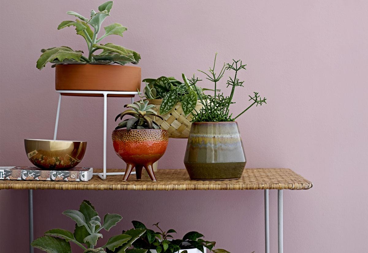 12x de leukste plantenpotten
