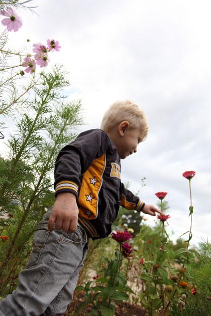 Natuurlijke tuin kinderen - spelen in de tuin