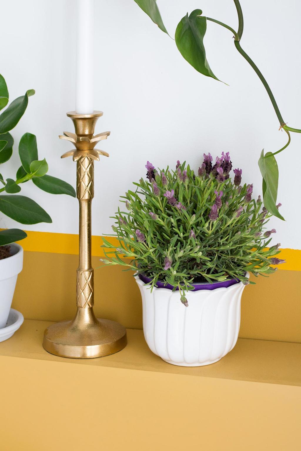 Gele lambrisering met lavendel en planten in de slaapkamer