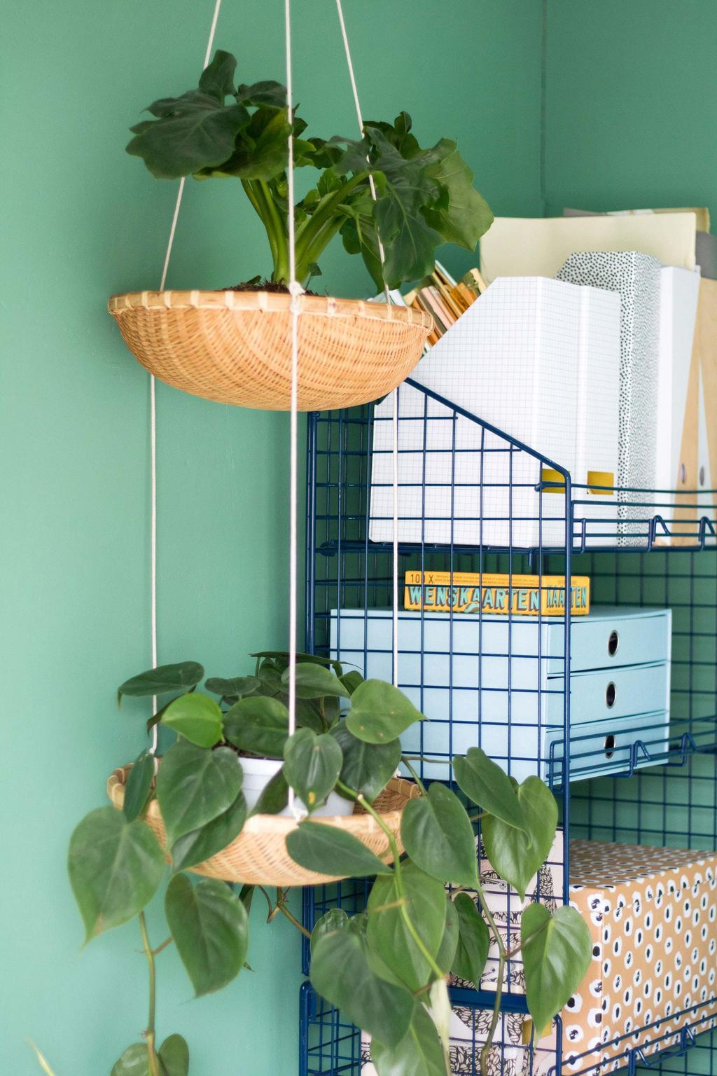 Plantenhanger met een groene muur en een kast