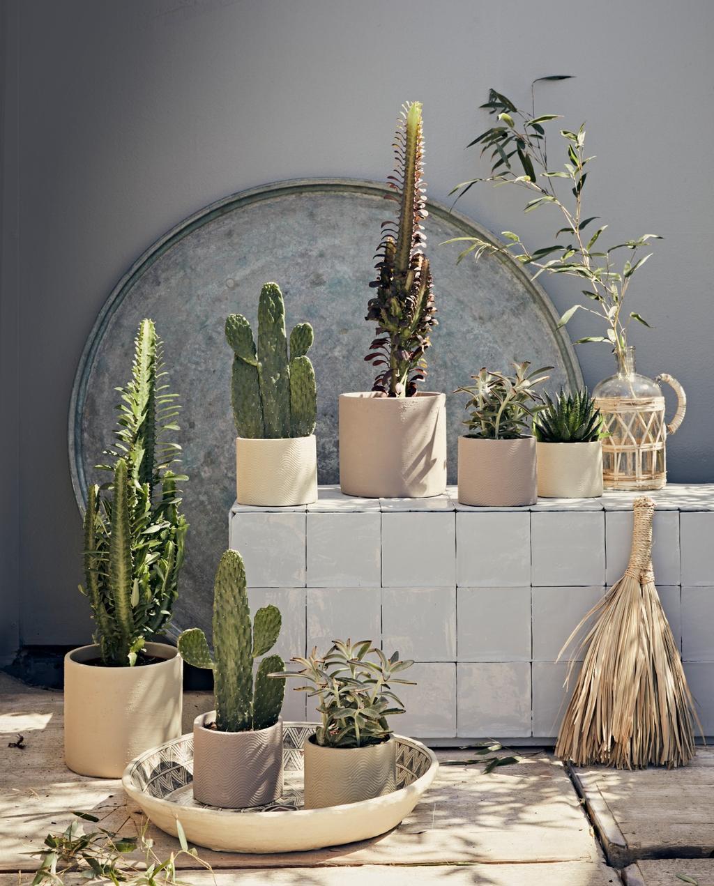 vtwonen styling 06-2020 strand ajuma wit betegelde muur met cactussen