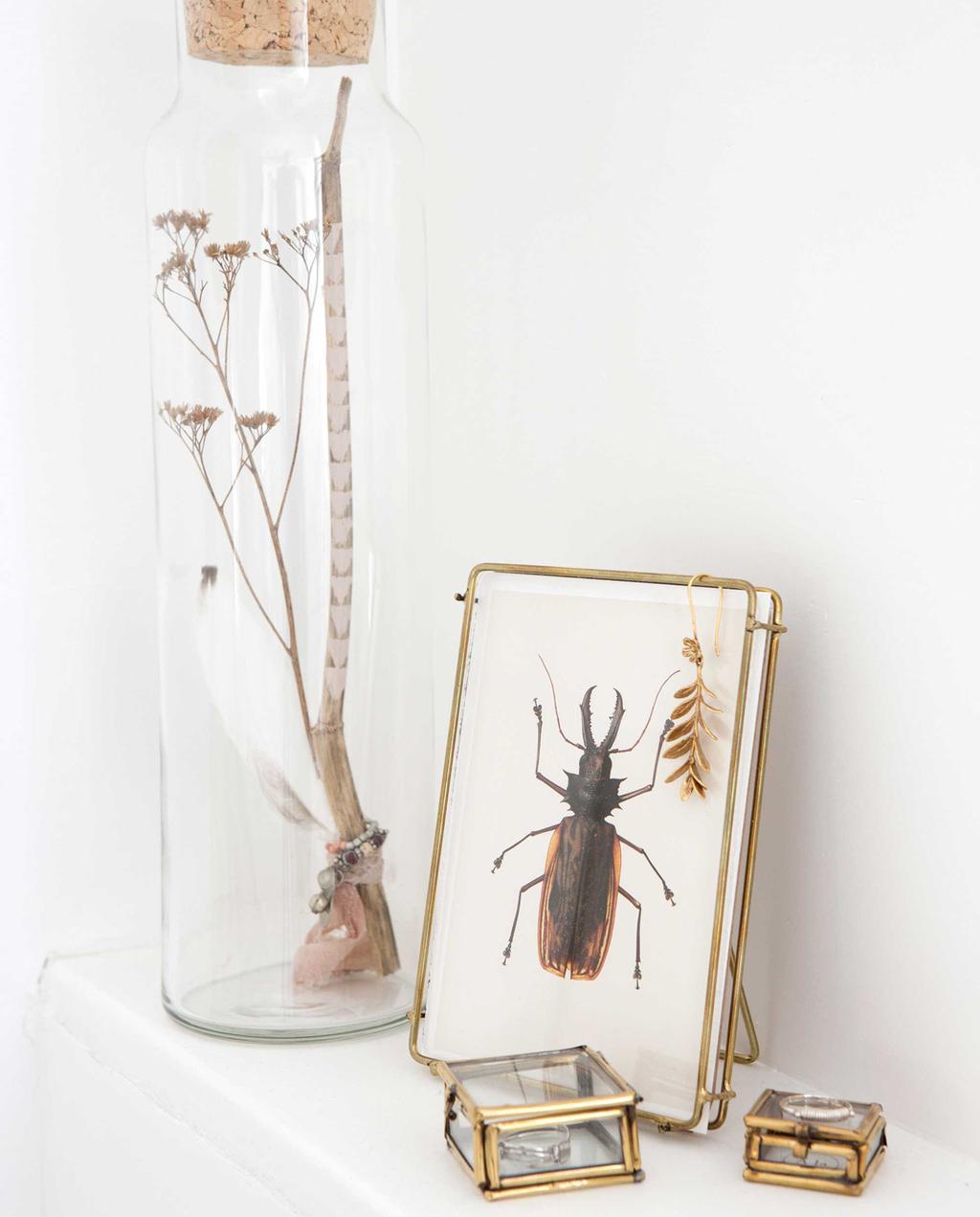 fotolijstje met tor en glazen fles met gedroogde bloem