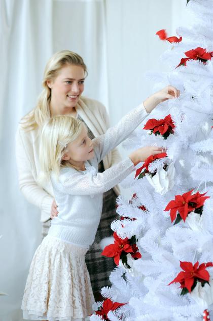 witte kerstboom kerststerren