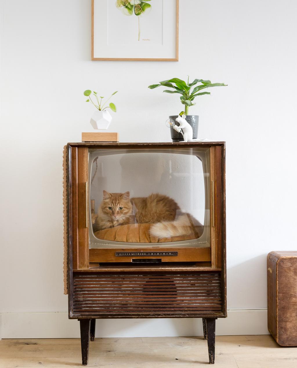 vtwonen weer verliefd op je huis | seizoen 11 aflevering 4 | fotografie Barbara Kieboom | styling Eva van de Ven