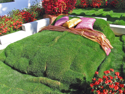 bed-grass-velvet-sleeping