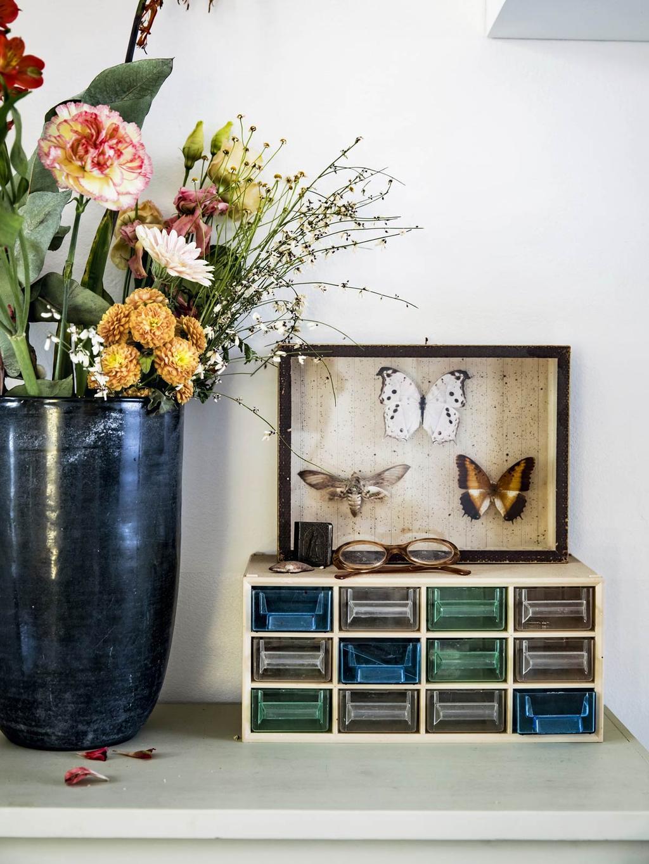 Grote bloemenvaas en opgezette vlinders in lijst