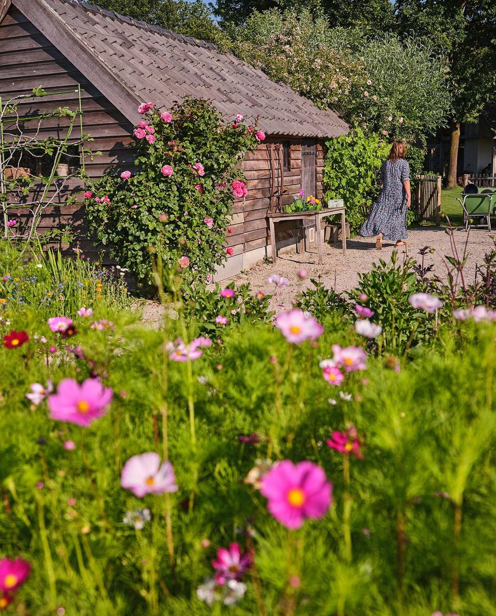vtwonen tuin special 3 2021 | roze bloemen in de pluktuin