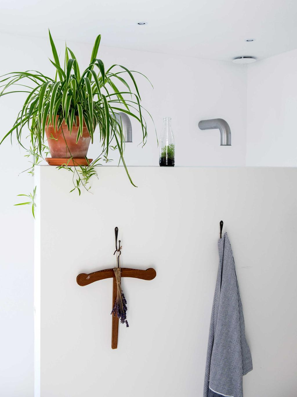 plant in de badkamer