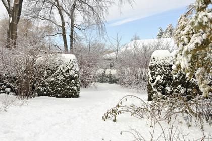 sneeuw-in-tuin
