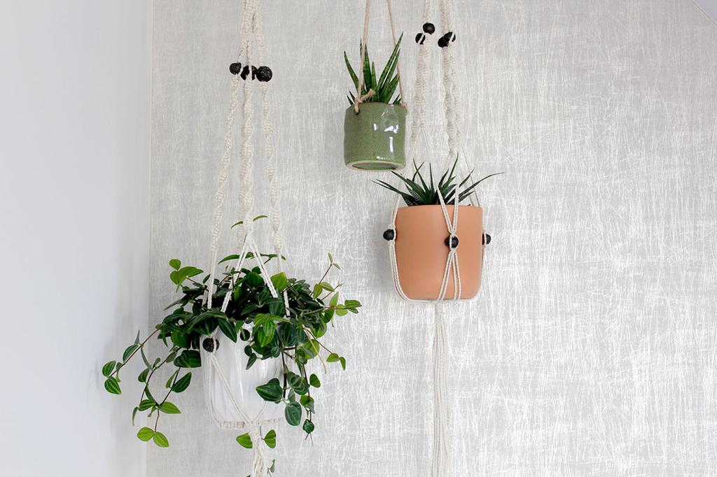 Detail van de statement wall met behang en hangplanten voor #projecthometobe25