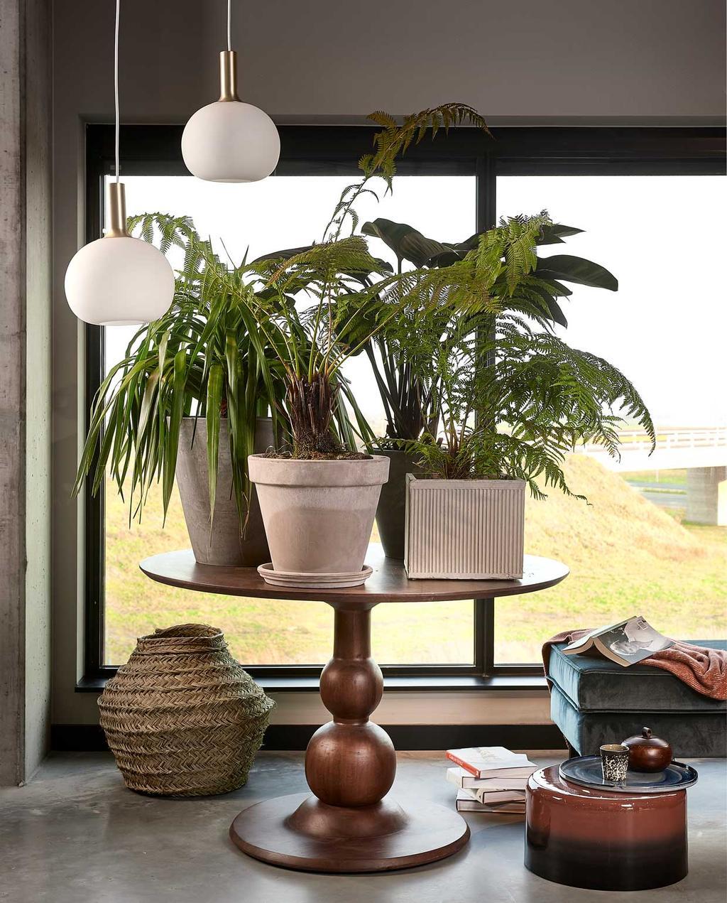 plantentafels | groen in huis | ronde eettafel | kamerplant