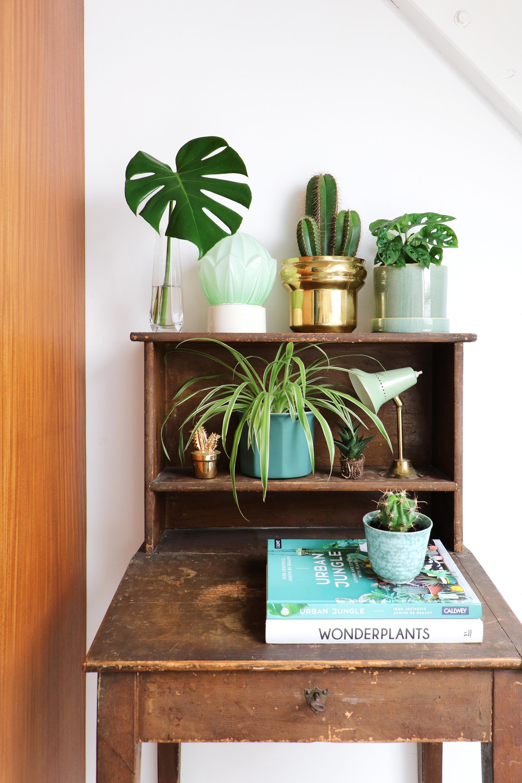 Schrijverstafel met planten en boeken