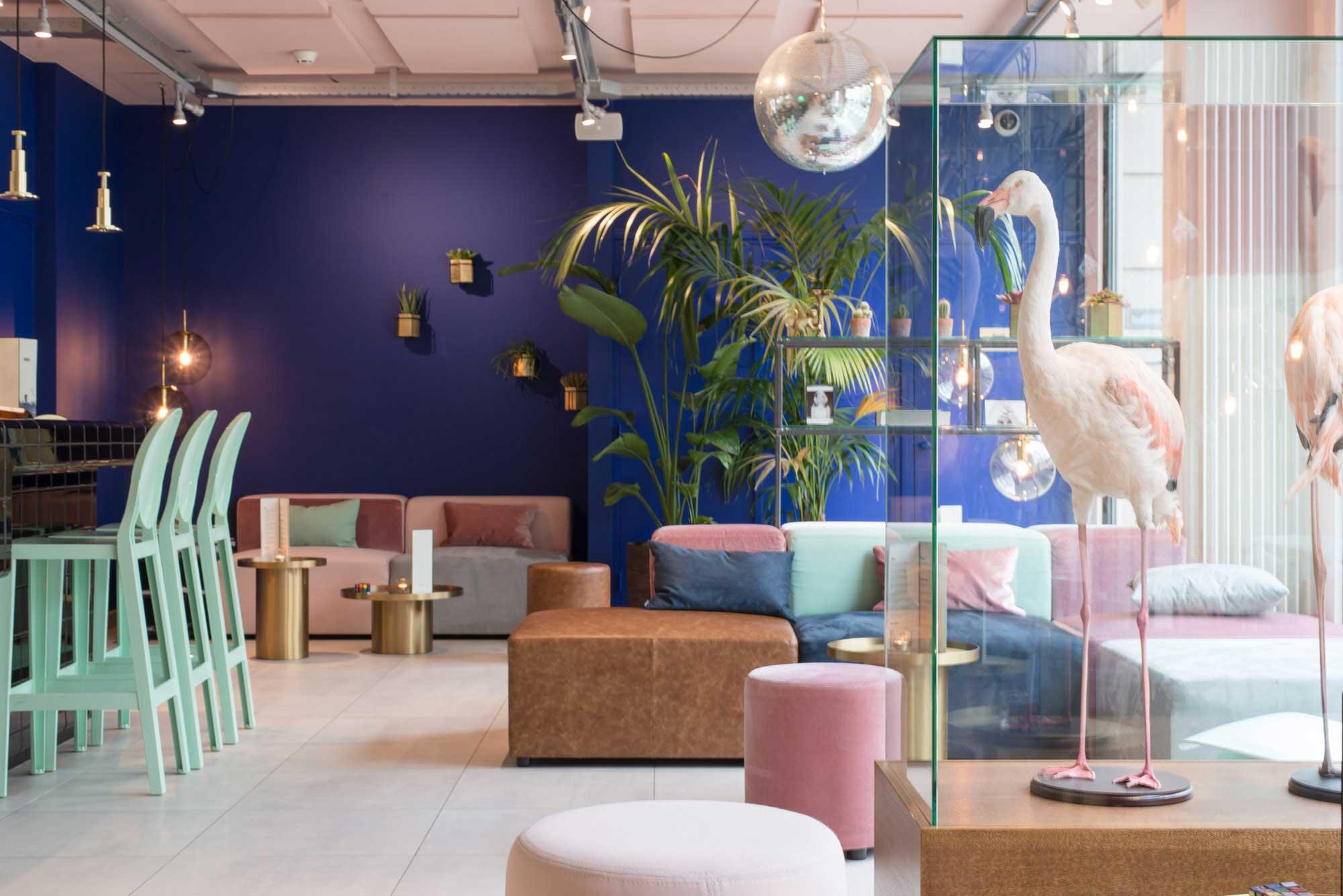 dutch hotel flamingo hotspot