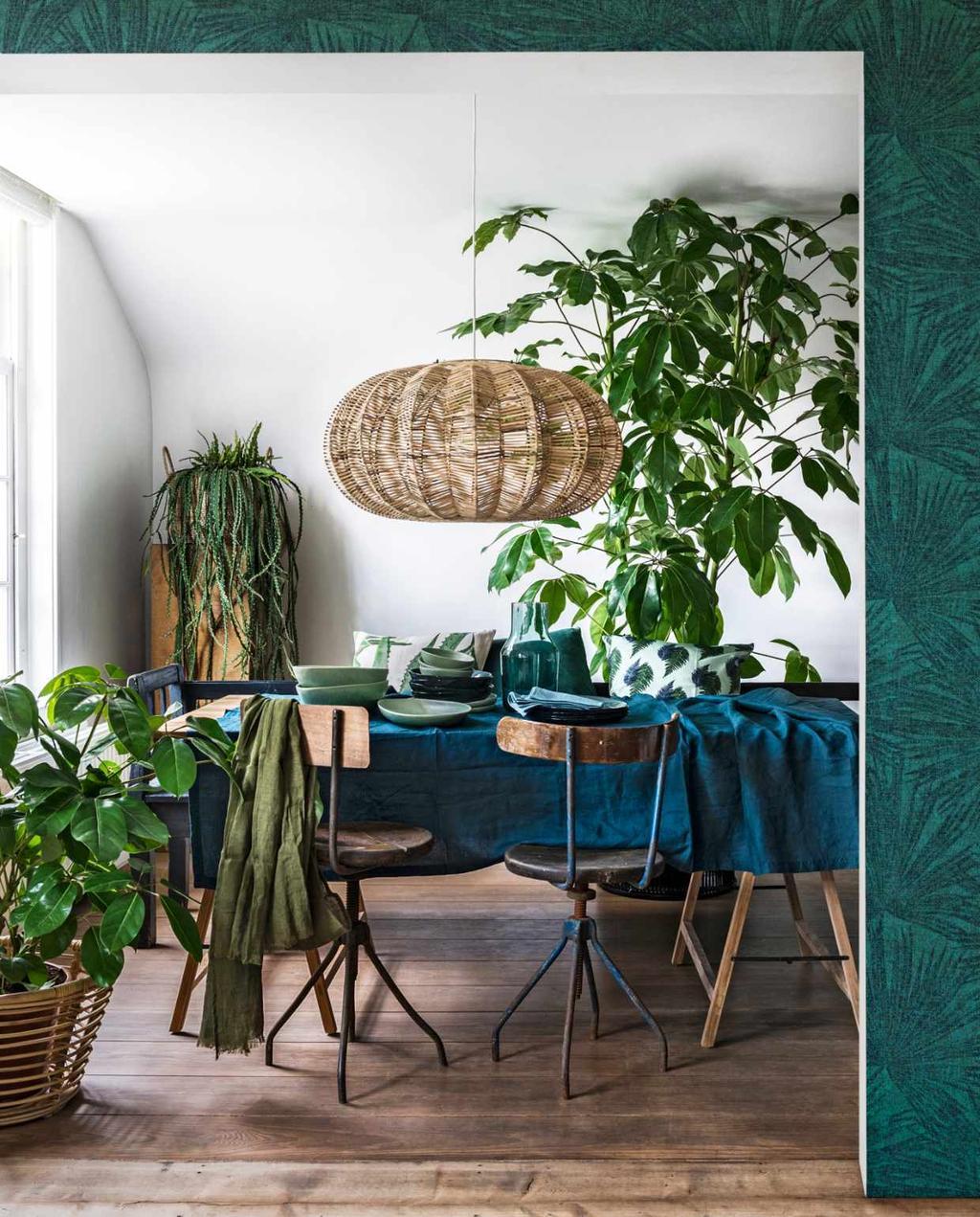 kamerplanten - planten - vtwonen