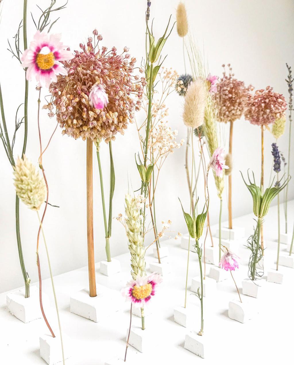 vtwonen | blog kristel: gedroogde bloemen in minivaasjes