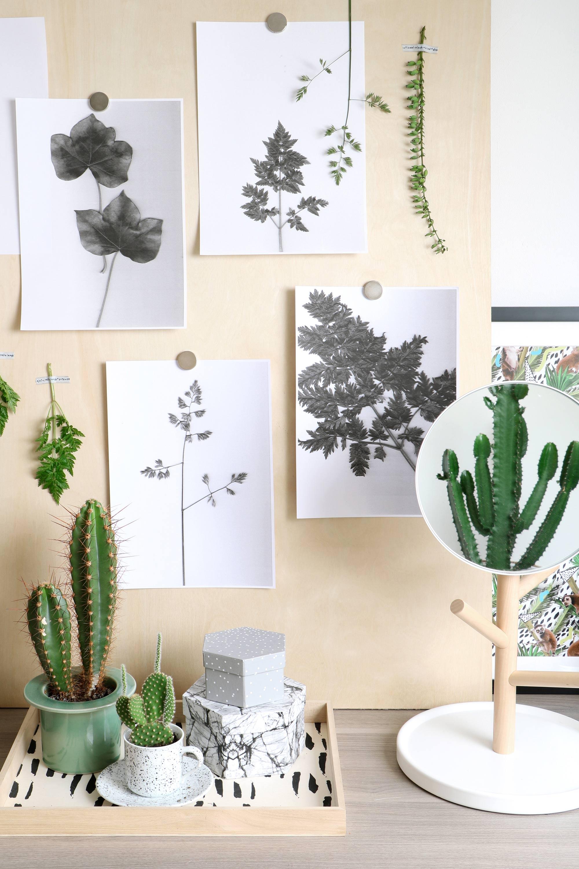 Botanische wanddecoratie