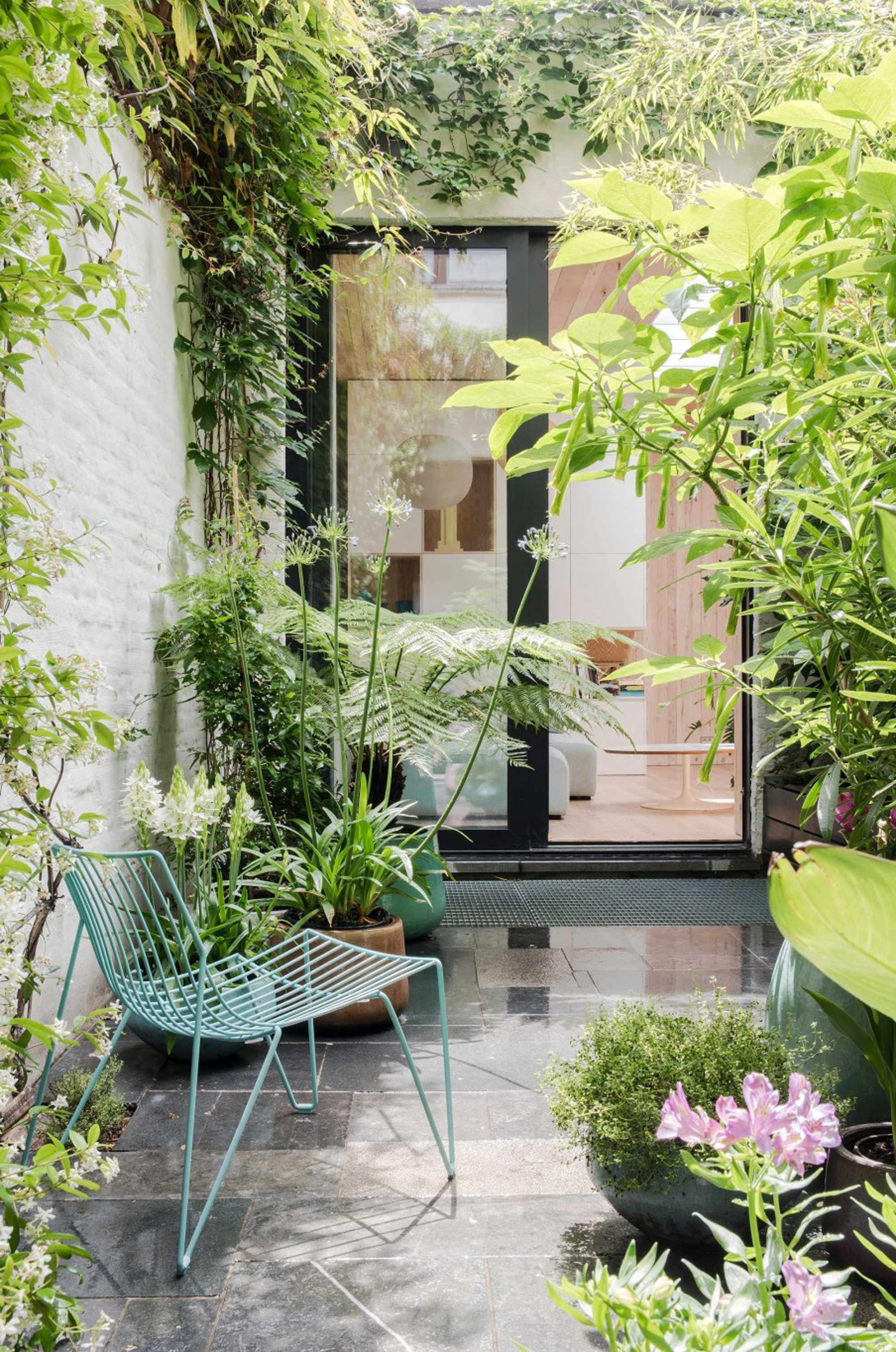 kleine tuin binnenplaats klimop begroeiing planten