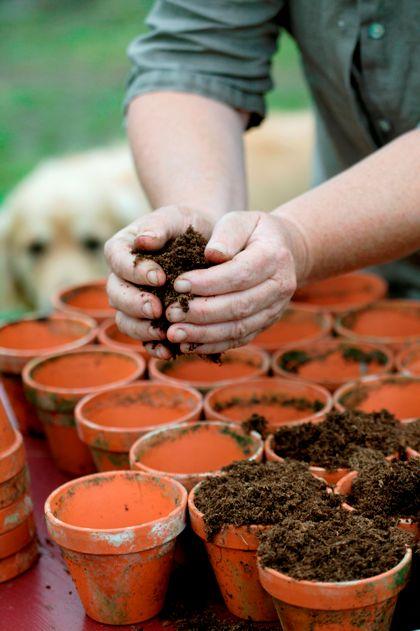 Tuinieren maakt gelukkig