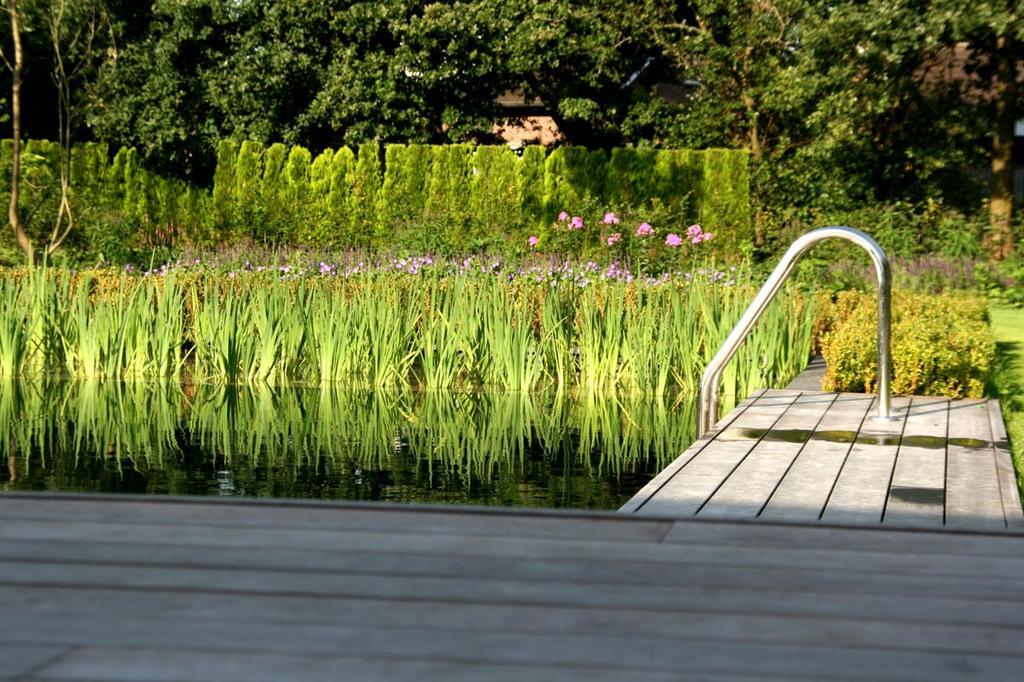 Natuurzwembad in de tuin