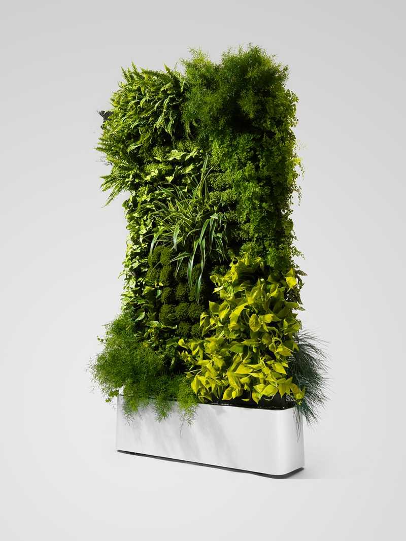tuinieren planten kamerverdeler