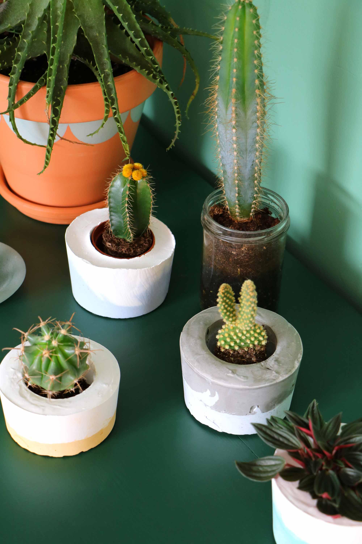 DIY-idee met groen: bloempotten van beton - Marij van My attic