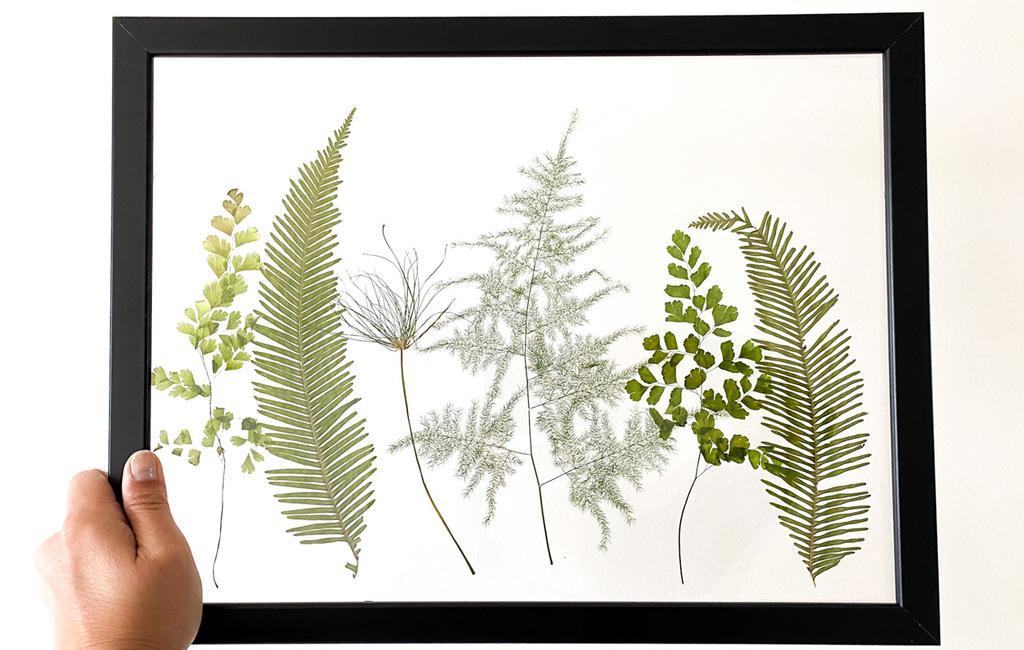 planten in lijst