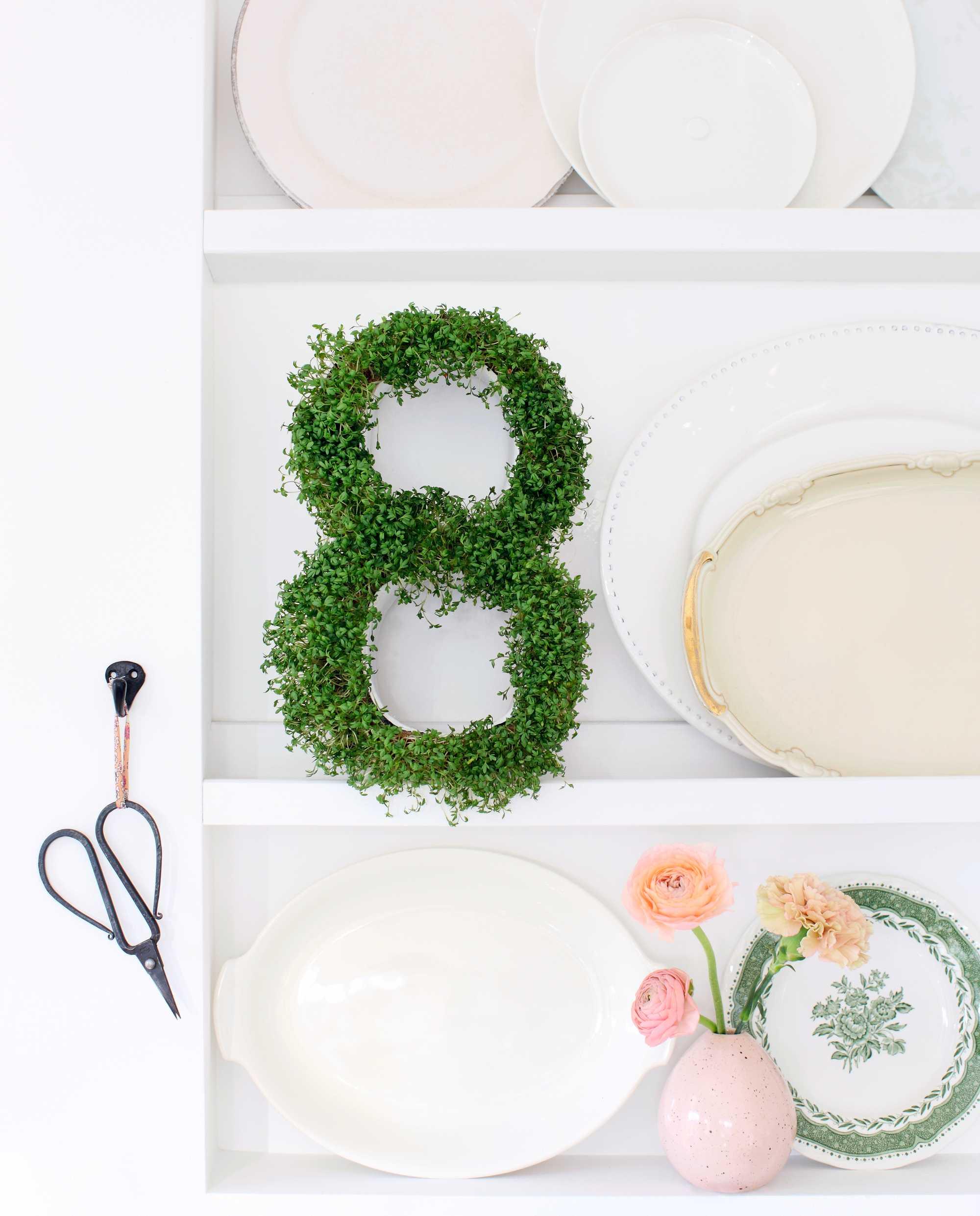 groen keuken kruiden diy