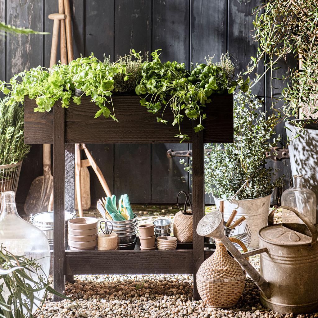 tuinspecial diy winactie kruidenbak | groente in een pot kweken
