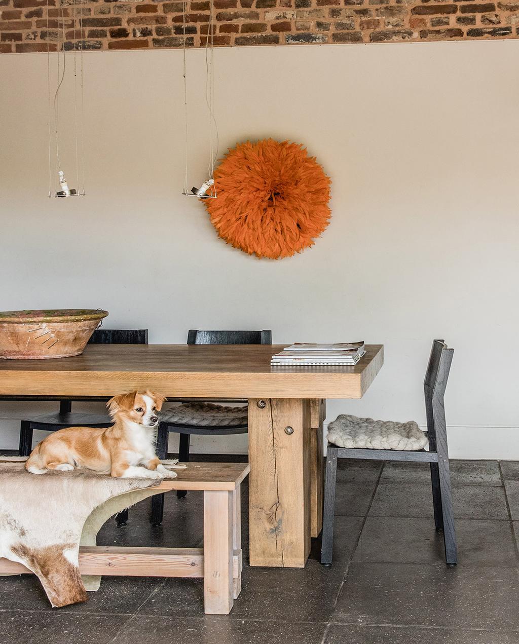 vtwonen 05-2021 | houten eettafel in landelijk huis met hond op de eetkamerbank