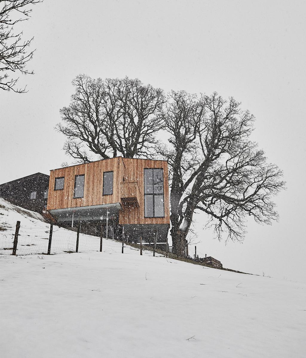 Duurzame boomhut in Tirol | vtwonen 13-2020