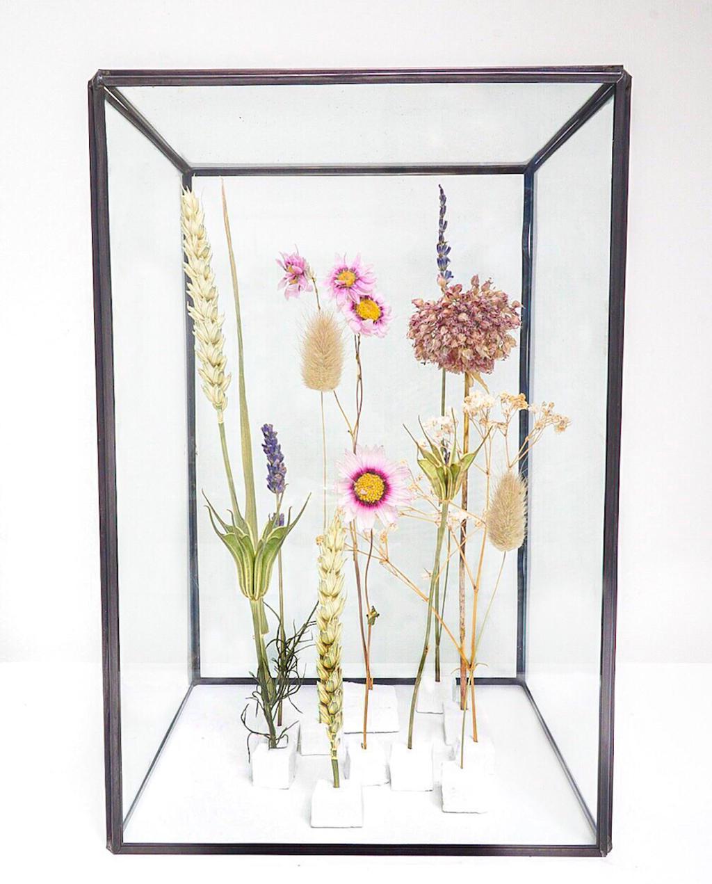vtwonen | blog kristel: gedroogde bloemen in vitrine