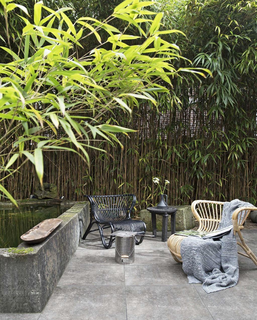 Breng je tuin binnen een paar uur weer in shape | vtwonen buitentegels