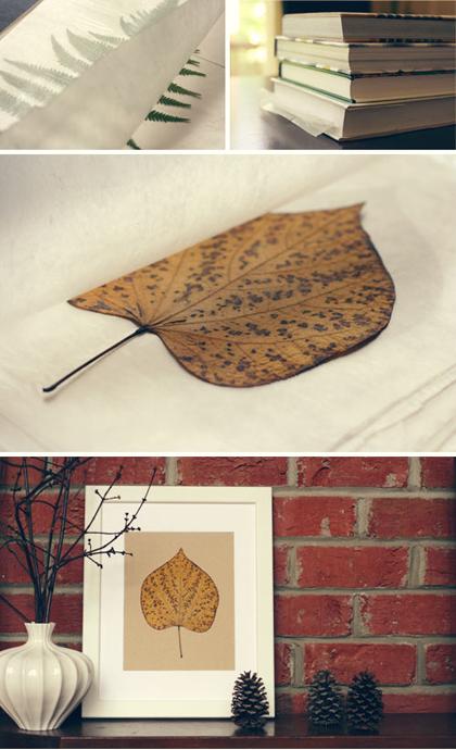 Herfstbladeren