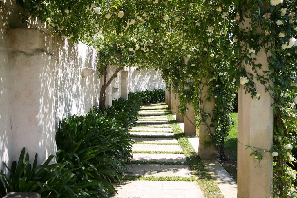 don totu tuin pad stapstenen bomen