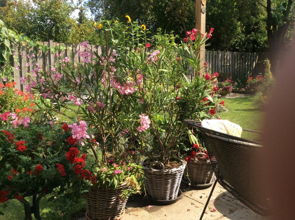 weelderige-bloembakken