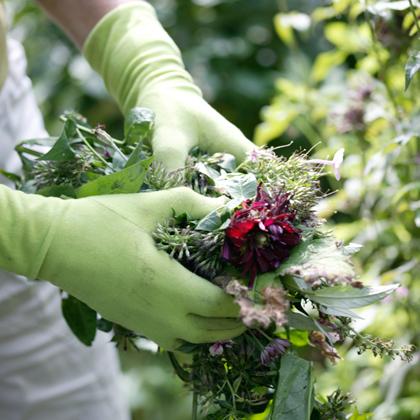 beeld-test-milieubewust-tuinieren