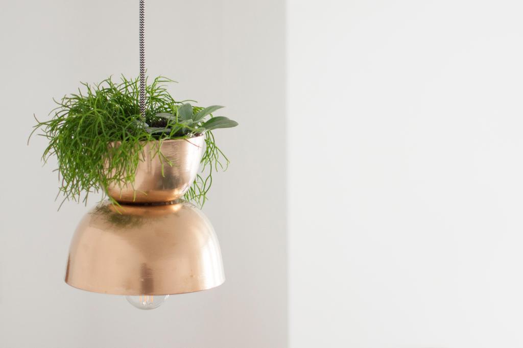 DIY hanglamp met planten - Zoë Van Quickelberge - vtwonen