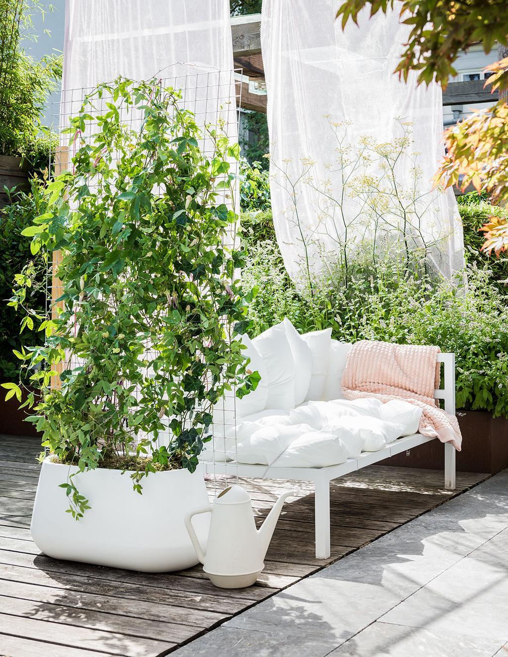 Een vrolijke tuin met bloemen in pot.