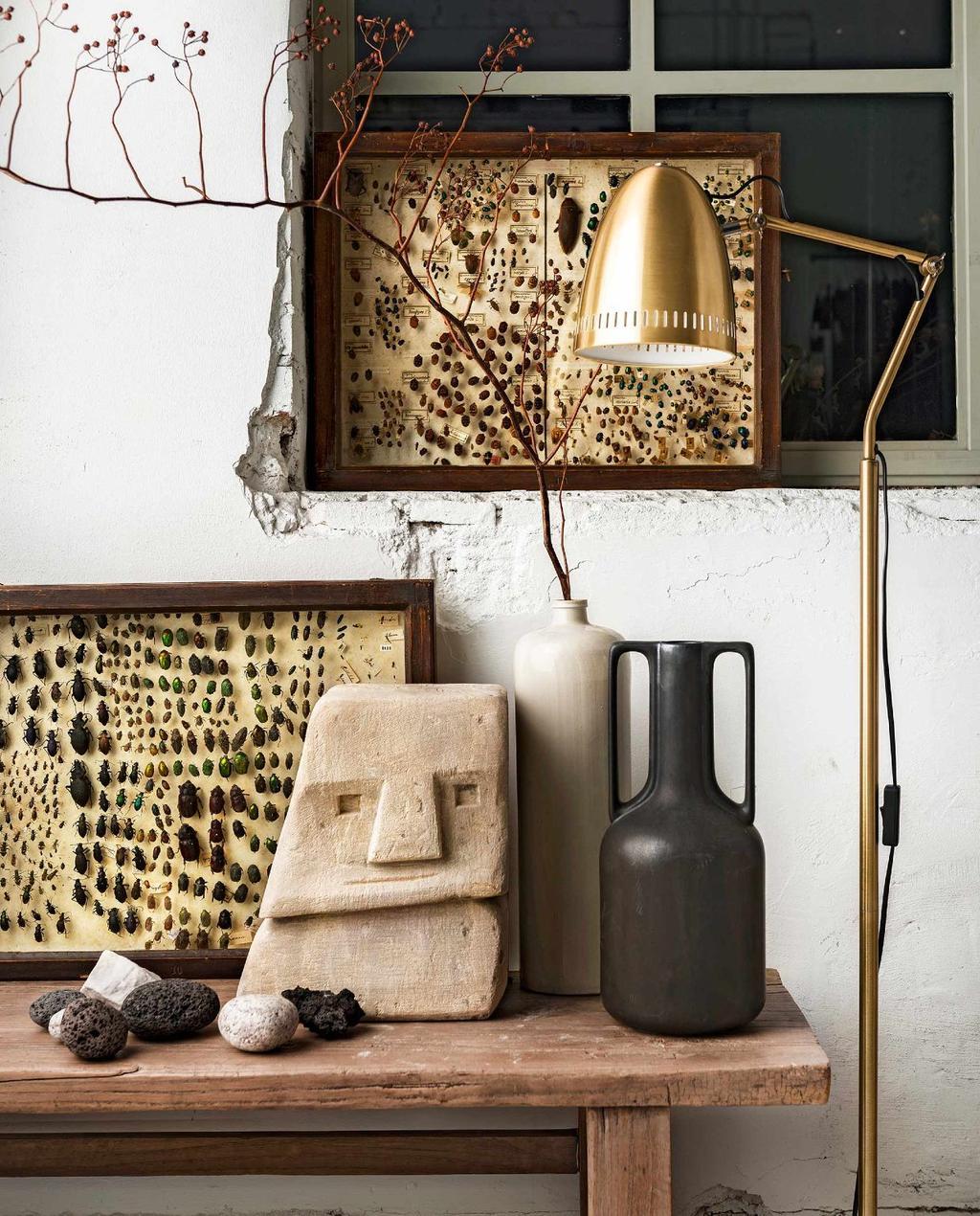 Sidetable met vazen, stenen gezicht en opgezette insecten