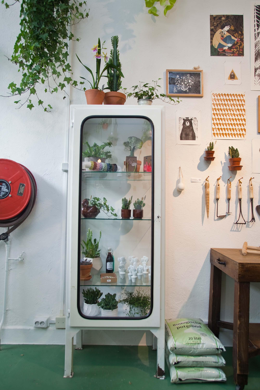 wildernis-amsterdam-stadstuin-kamerplanten-winkel-3
