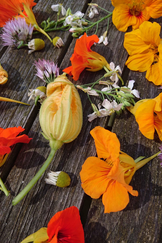 diverse eetbare bloemen