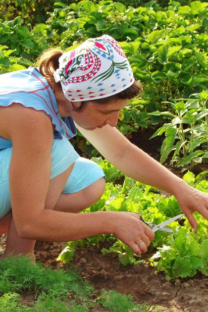 Ergonomisch tuinieren