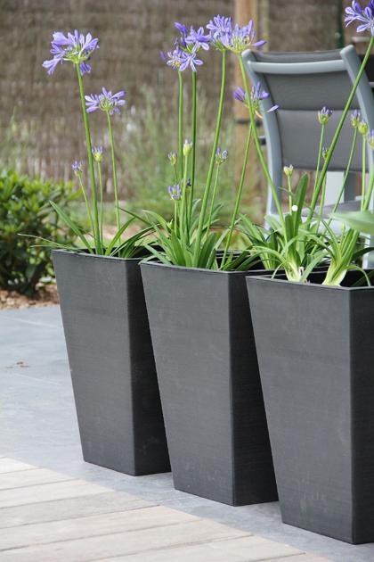 zwarte plantenbakken