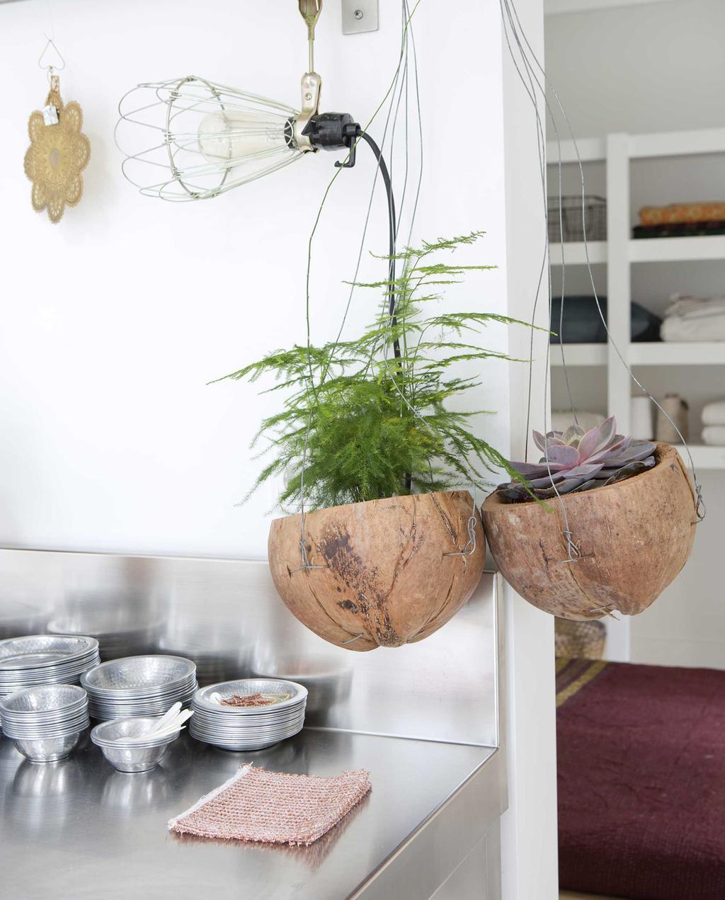 kokosnoot plantenbakken