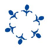 hollandsblauw-tek4